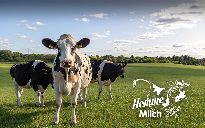 Hemme Milch GmbH & Co. KG